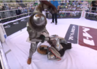 Outdoor Medieval Knight MMA
